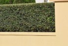 Airds Decorative fencing 30